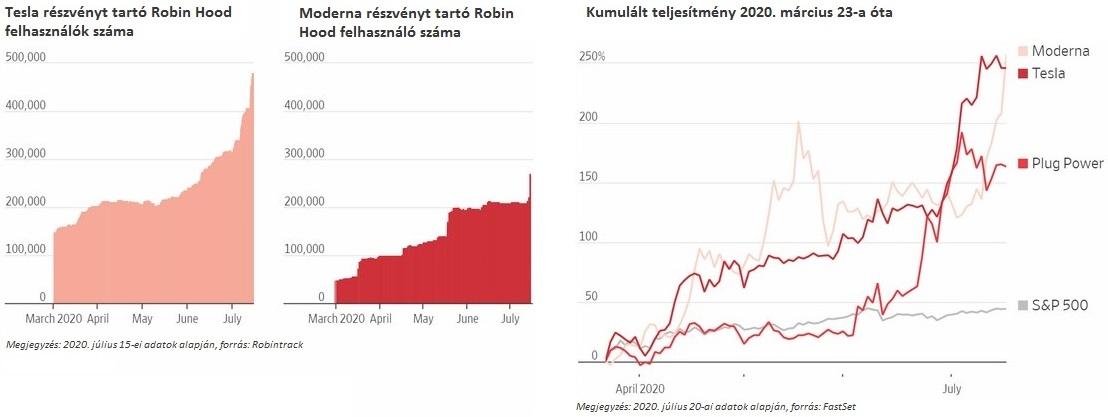 Robin Hood befektetőkről néhány érdekes ábra ami azt mutatja mennyire megugrott egy-két technológiai részvényben a részesedésük.